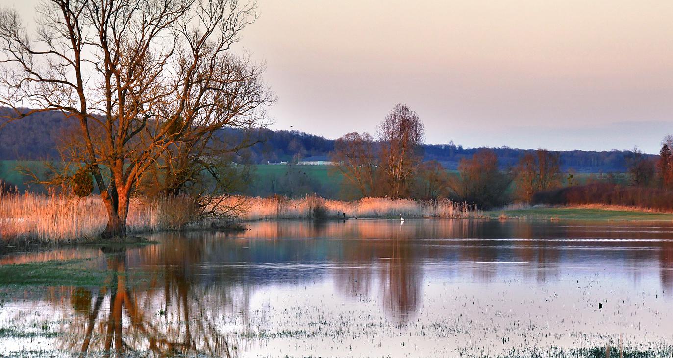 überflutetes Flussufer