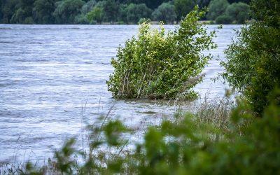 Hochwasser-Risiko-Vorsorge in Sachsen-Anhalt
