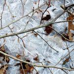 Hochwasser wird zu Eis